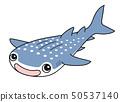 고래 상어 Whaleshark 50537140
