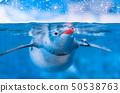 Penguin in Aquarium 50538763
