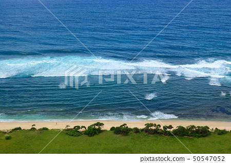 Seashore in Bali 50547052