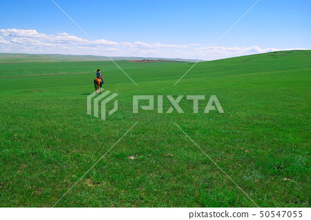 Horseback rider in grassland 50547055