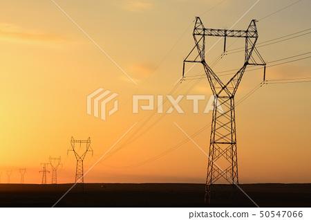 Telegraph pole at sunset 50547066