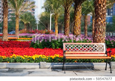 Garden chair 50547077