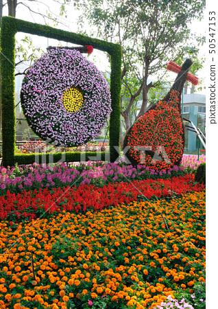 Flower musical instruments 50547153