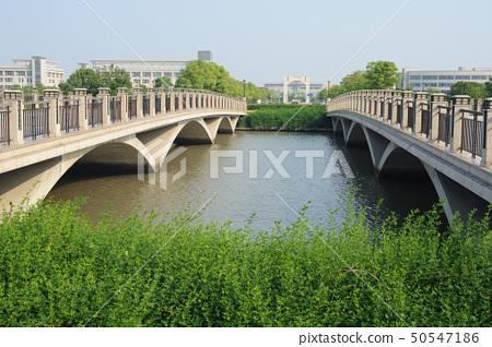 Two bridges 50547186