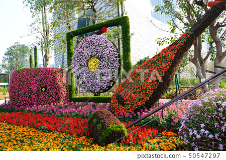 Musical instruments made of flowers 50547297