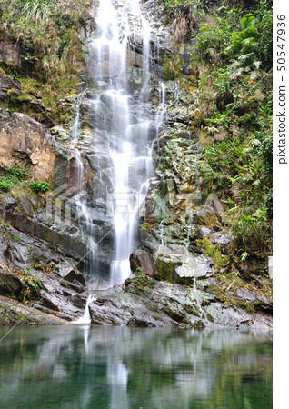 Mountain stream waterfall 50547936