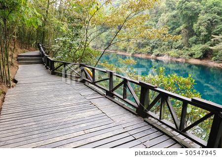 Wooden road 50547945
