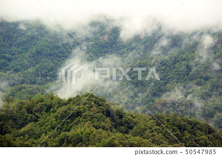 Mountain with fog 50547985