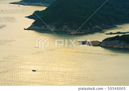 Ocean seaweed farm in China 50548005