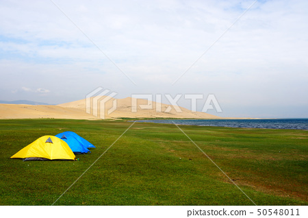 Tent on the lawn 50548011