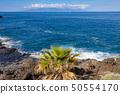 View of La Gomera island from Puerto de Santiago 50554170