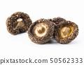 dry Mushrooms isolated on white background. 50562333