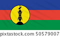 Flag New Caledonia swaying in wind, vector 50579007