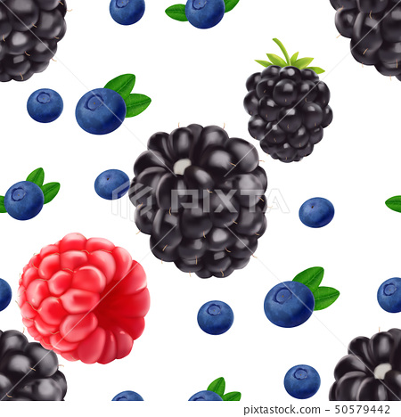 Realistic Blackberry blueberry and raspberry seamless pattern. 50579442