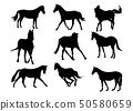 silhouettes graphic vector illustration set 50580659
