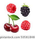 Blackberries cherry and raspberries. 3d vector icon set. Realistic illustration 50581848