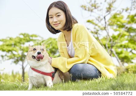 웰시코기,강아지,산책,젊은여자 50584772