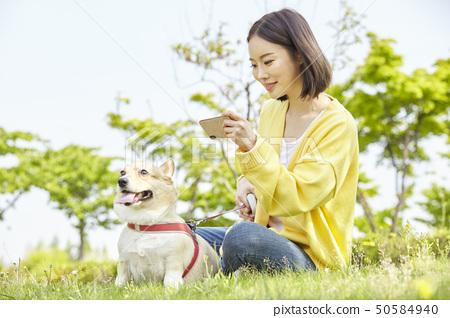 웰시코기,강아지,산책,젊은여자 50584940