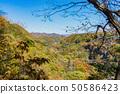 자연 이미지 50586423