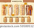 Mummy creation cartoon vector infographic 50589532
