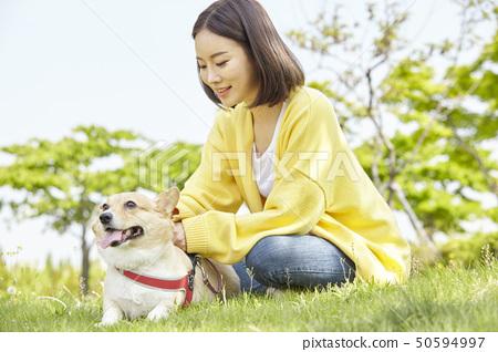 웰시코기,강아지,산책,젊은여자 50594997