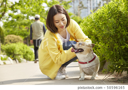 웰시코기,강아지,산책,젊은여자 50596165