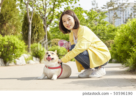 웰시코기,강아지,산책,젊은여자 50596190