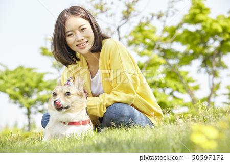웰시코기,강아지,산책,젊은여자 50597172