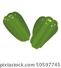green pepper 50597745