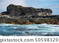 Seal rock the biggest seal colony in Australia. 50598320