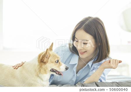 웰시코기,강아지,집,주택,젊은여자 50600040