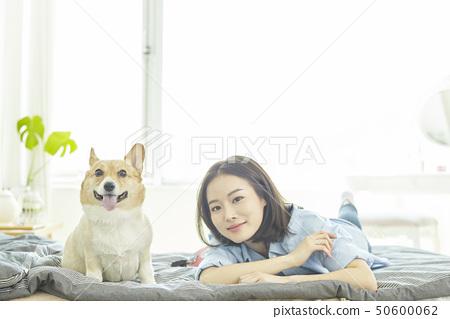 健康,小狗,房屋,房屋,年輕女性 50600062