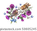 Watercolor pair of birds on a branch with thistle, 50605245