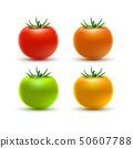 Tomato colorful isolated on white. Tomato organic food photo-realistic red orange yellow and green 50607788