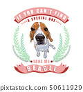 Beagle dog sitting in frame ,leaves and ribbon 50611929
