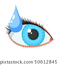 Female eye and drop on a white background 50612845
