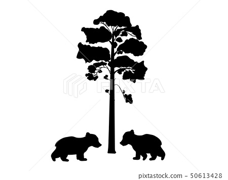 Two cub bears near tree silhouette animal 50613428