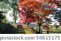 마루야마 댐의 단풍 50615175