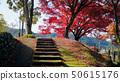마루야마 댐의 단풍 50615176