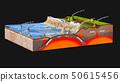 scientific ground cross-section, tectonics 50615456