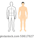 Man anatomy silhouette size. Human body full measure male figure waist, chest chart template 50617027
