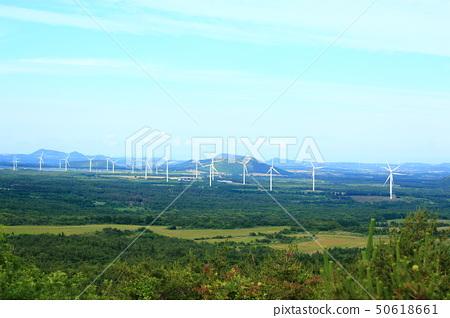 물영아리 오름,숲속,산책길, 50618661