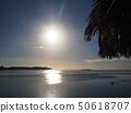 타히티의 태양 조용한 바다 50618707