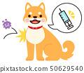 注射气球和排斥病毒的狗的插图(接种疫苗的图像) 50629540