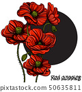 Hand drawn red poppies. Floral design element. Vector illustration for posters, banners, greeting 50635811