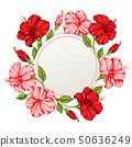 Tropical floral frame with pink and red flowers 50636249