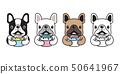 개, 강아지, 벡터 50641967