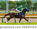 แข่งม้า 50645423