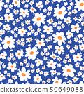 抽象花卉, 50649088
