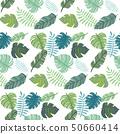 남국의 식물 원활한 패턴 50660414